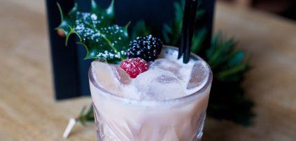 Christmas Cocktail - Alexandria Dawn Photography 3